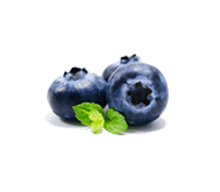 Blueberry Gelato