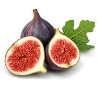 Fig Gelato